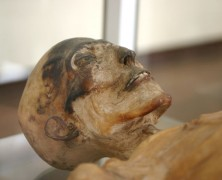 MUMMIES AND THE TRUE ORIGIN OF HEART DISEASE